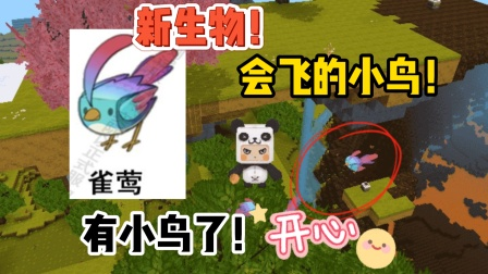 """迷你世界-会飞小鸟""""雀莺""""的消息?六种蝴蝶和它生活一座小岛上"""