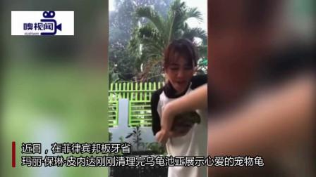 菲律宾:女子录视频展示宠物乌龟,反被其咬伤胳膊惨叫