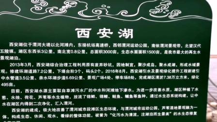 第四集:游西安北郊渭河《西安湖》纪实