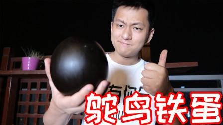 我把鸵鸟蛋做成跟皮球一样有弹性!怎么磕碰都不会破!