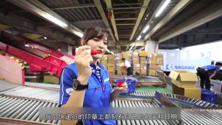 日本女快递员真实的一天,原来打工人的快乐这么简单