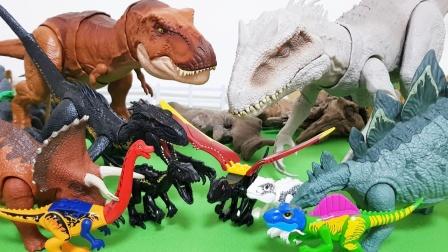 彩色小恐龙和黑色恐龙来PK