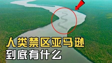"""亚马逊河有多可怕?为什么被称为""""人类禁区""""?"""