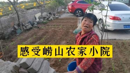 青岛崂山仰口感受农家小院生活