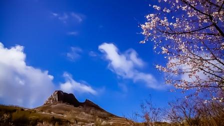 【琴师竖笛】北国之春