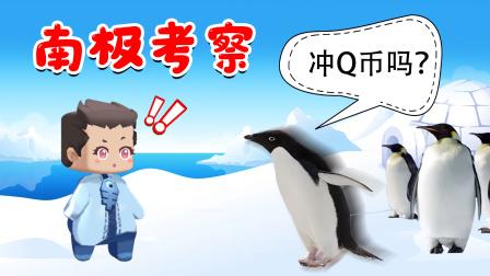 木鱼到南极考察,被一群企鹅围着说:冲Q币不?笑喷