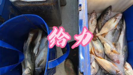 阿杰今天一个人的鱼货装了满满一大包,网友第一次海钓直接上瘾了
