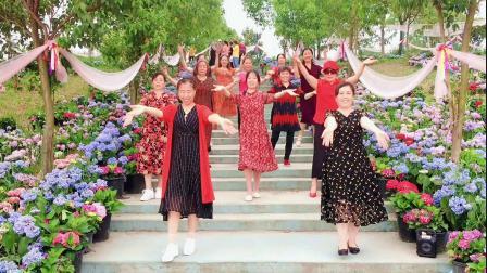 赏花游玩跳热门广场舞《三生石下》姐妹们永远的回忆