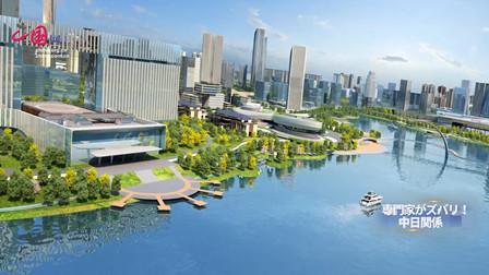 日企盛赞长三角投资环境 持续看好中国市场