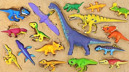 寻找沙山里的侏罗纪小恐龙