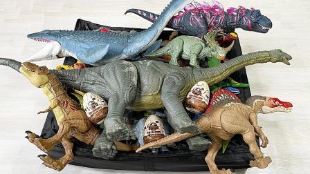 可爱的恐龙汽车和恐龙模型玩具展示