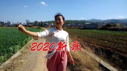 2020一首网络情歌,词曲句句入心,现实又动听,有情人最爱听