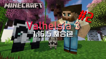 【Red老司机】我的世界 1.16.5 Valhelsia3 #2