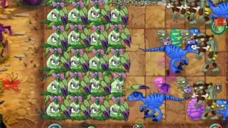 植物大战僵尸:1阶新植物尖刺秋葵,能打得过四阶僵尸吗?