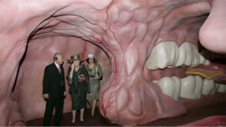 国外身体博物馆,走进女巨人的身体,探秘了解你想看的一切