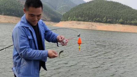 农村小伙和朋友去水库钓鱼2个多小时狂拉小白条,最后终于上大货