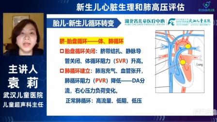 新生儿心脏生理和肺高压评估