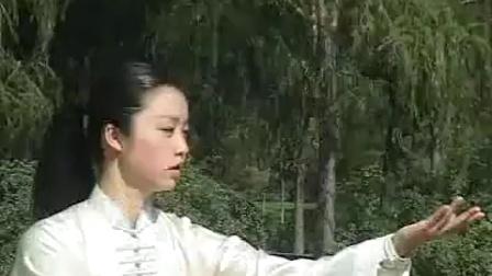 邱慧芳老师42式太极拳11~18