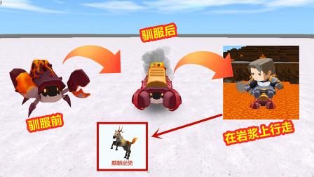 迷你世界:骑着焱焱蟹在岩浆上行走,真的不会掉血吗?