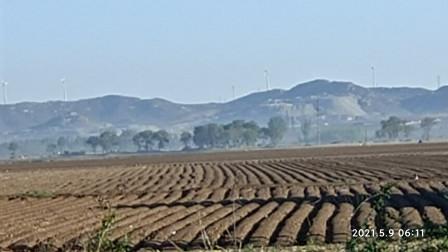 带你走进春耕现场 凌海农村大面积播种花生成为农民增收的支柱