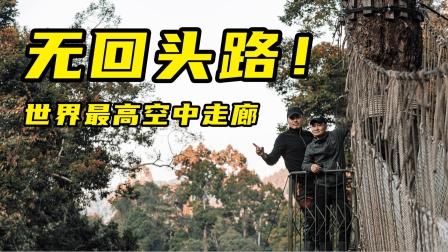 """【骑不够·版纳】世界之最!是什么原因让主角打出""""五星菊花""""的评分?骑上KTM和非双,走国道探索版纳!"""