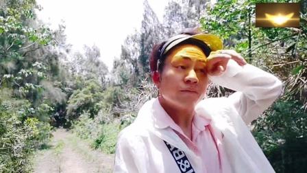 hmoob_苗族去山上摘杨梅吃了
