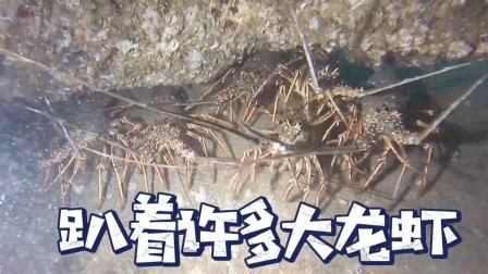 海底鱼礁,趴着许多大龙虾!