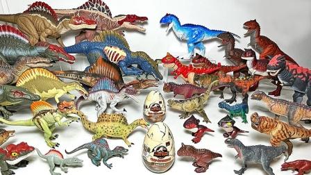 彩色侏罗纪恐龙玩具认识棘龙和食肉牛龙