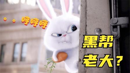 这么萌的兔子竟是黑帮老大?我都萌出血了!