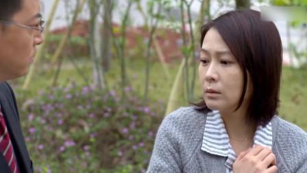 为了解除误会,江欣请律师出面,高迈会相信?