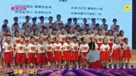 阳光206合唱团 苔 北京的金山上 2021