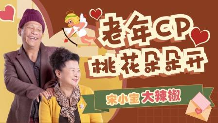 《刘老根4》宋小宝大辣椒,老年CP太好磕