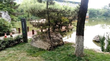 风光片【西安城市运动公园】欣赏