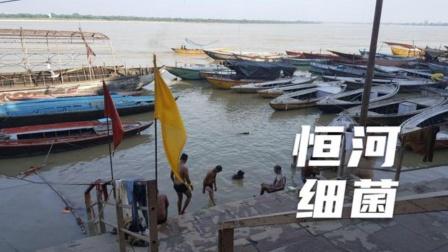 惊险超级细菌!从印度恒河河水当中发现,恒河环境有多恶劣?