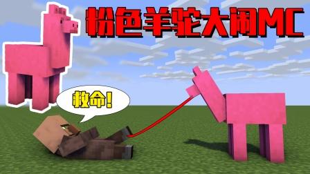 我的世界mod:当我变成一只粉色羊驼后,整个MC乱成了一锅粥!