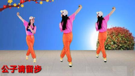 广场舞《小姐请留步》背面加正面跳教学 挺好听的歌跳好看的舞