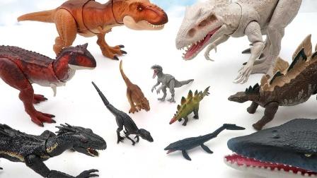 玩转恐龙转盘认识可爱的小恐龙