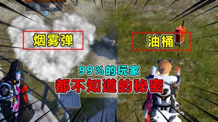 爆笑吃鸡:油桶和烟雾弹的正确使用方法,九成玩家都不知道的秘密