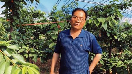 走进杨凌燎原农业合作社听蒋林喜讲樱桃产业发展
