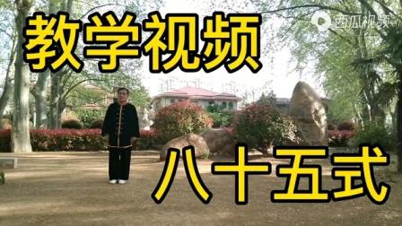 杨氏太极拳85式(慢动作)