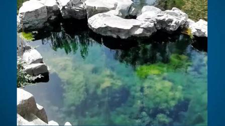 竖版短视频《济南七十二名泉——九女泉》