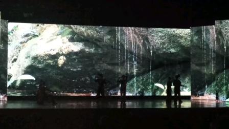 向氏药坊云南旅游研讨会西双版纳曼景法村观看《多歌.水》演出2021年5月23日