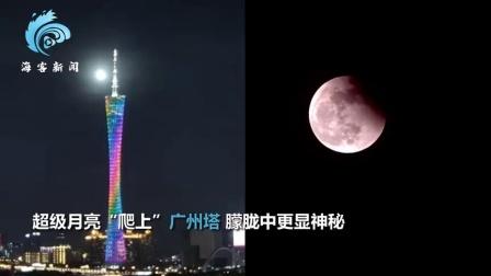 多角度看超级红月亮 50秒拍全国: 厦门飞机划月 北京白塔伴月食