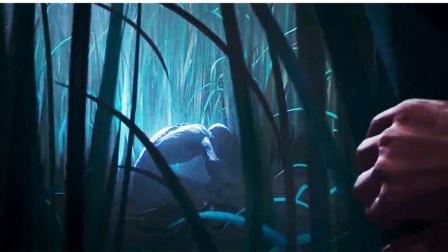 草地里总会发光,迷路男子险些被怪物吃掉,那是死去的冤魂3