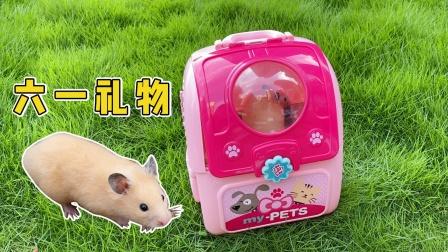 六一儿童节到了,主人给小仓鼠买了一个漂亮的玩具