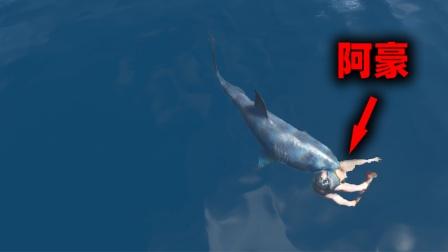 荒野求生176:阿豪跳海捉鱼,结果被鲨鱼咬了!