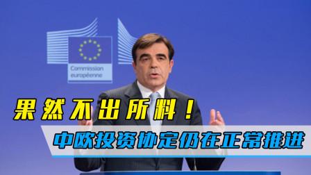 果然不出所料!紧张时刻,欧委会发言人确认:中欧投资协定仍正常推进
