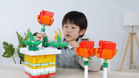 儿童创意玩具拼搭:玫瑰花和花盆能拼出什么