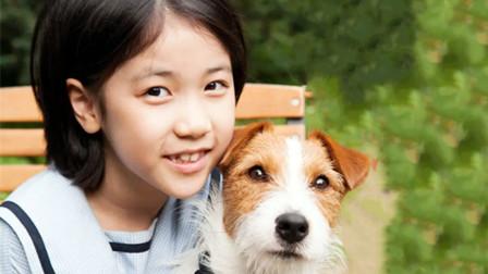 10岁小女孩无家可归,为攒够500万买房,精心策划一场偷狗计划!