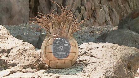 最励志的荒岛求生!一个排球支撑他在荒岛生存了四年!